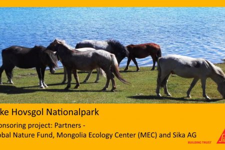 SIKA MONGOLIA SUPPORTS HOVSGOL NATIONALPARK